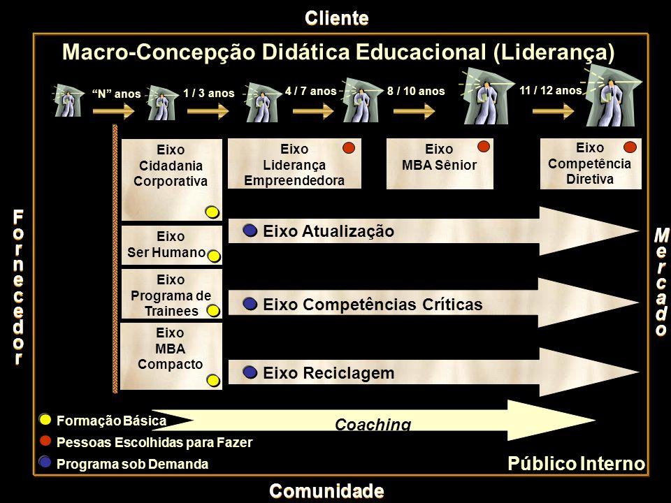 Macro-Concepção Didática Educacional (Liderança)