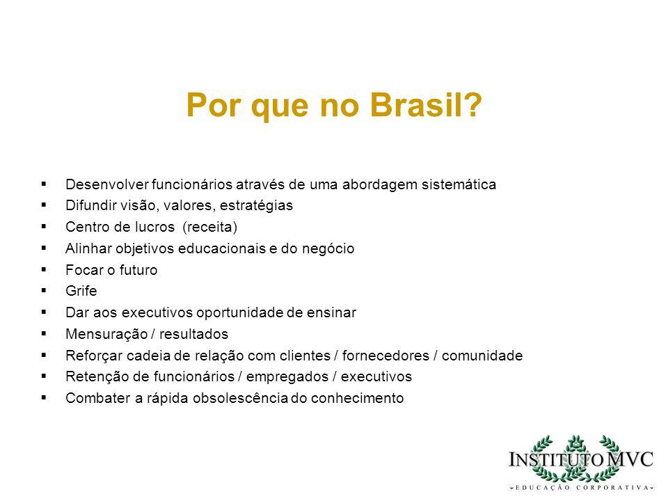Por que no Brasil Desenvolver funcionários através de uma abordagem sistemática. Difundir visão, valores, estratégias.