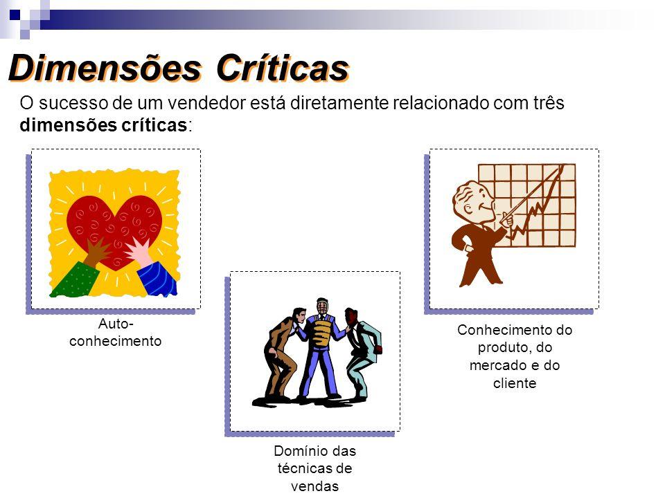 Dimensões Críticas O sucesso de um vendedor está diretamente relacionado com três dimensões críticas: