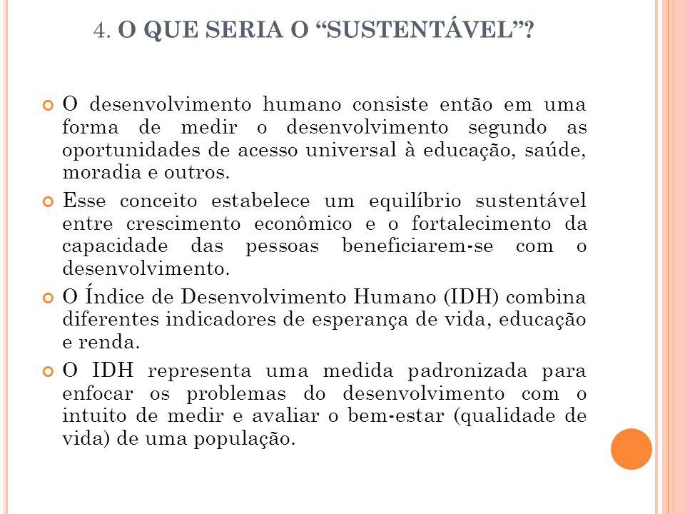 4. O QUE SERIA O SUSTENTÁVEL