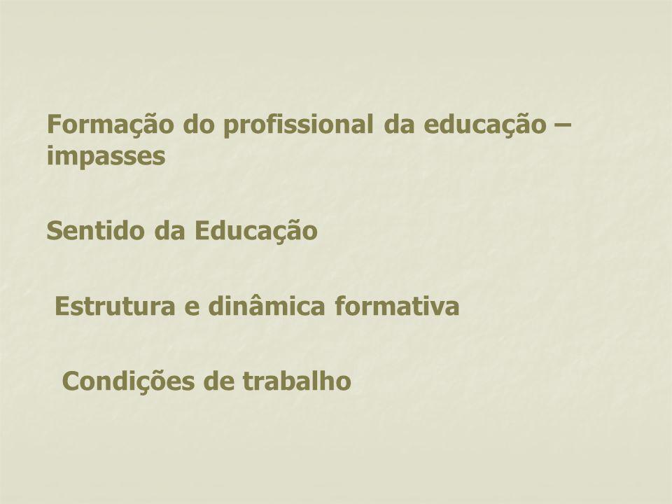 Formação do profissional da educação – impasses