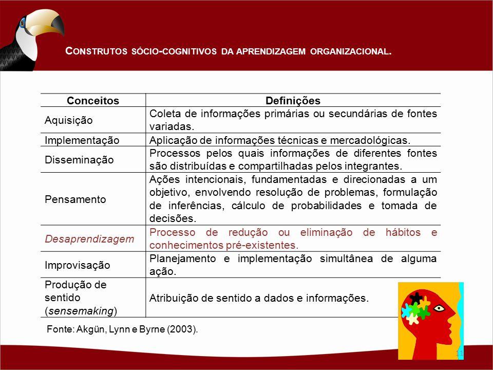Construtos sócio-cognitivos da aprendizagem organizacional. Conceitos