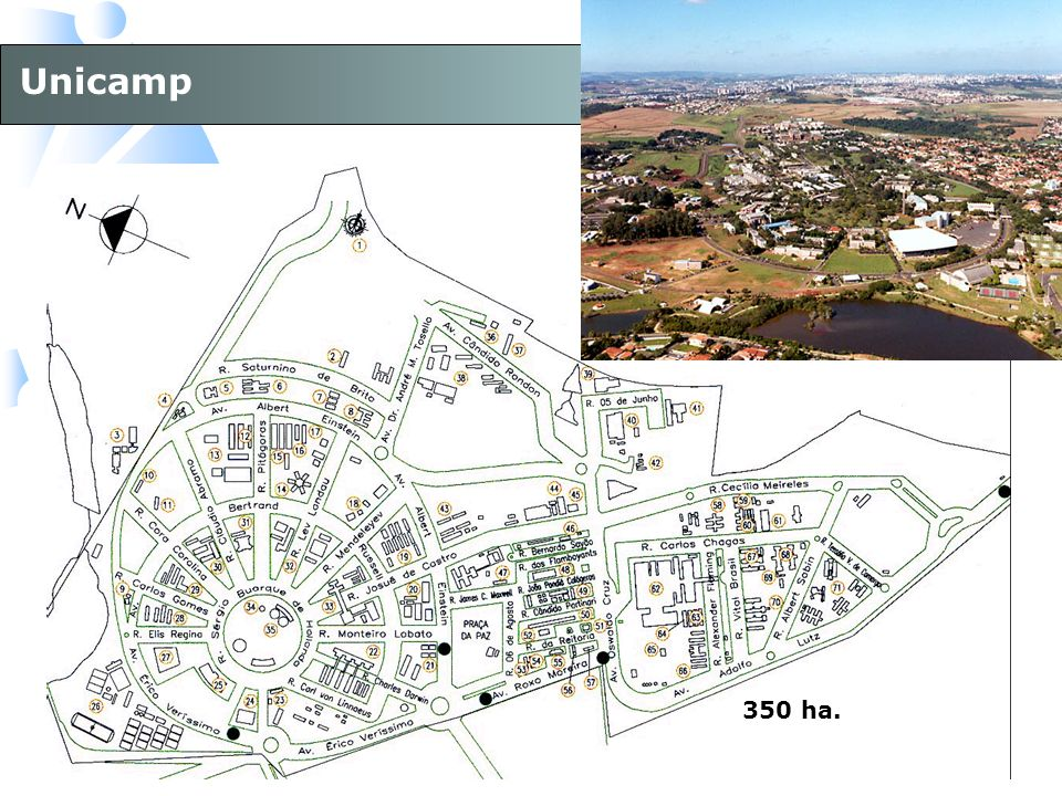 Unicamp 350 ha.