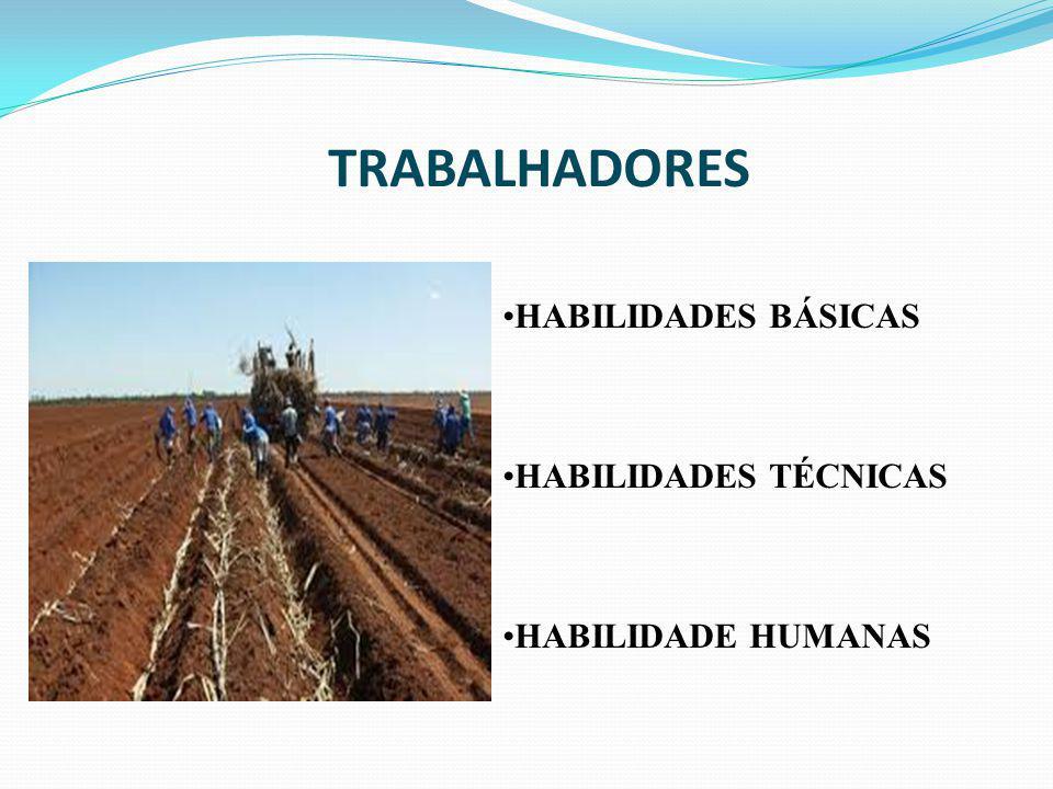 TRABALHADORES HABILIDADES BÁSICAS HABILIDADES TÉCNICAS
