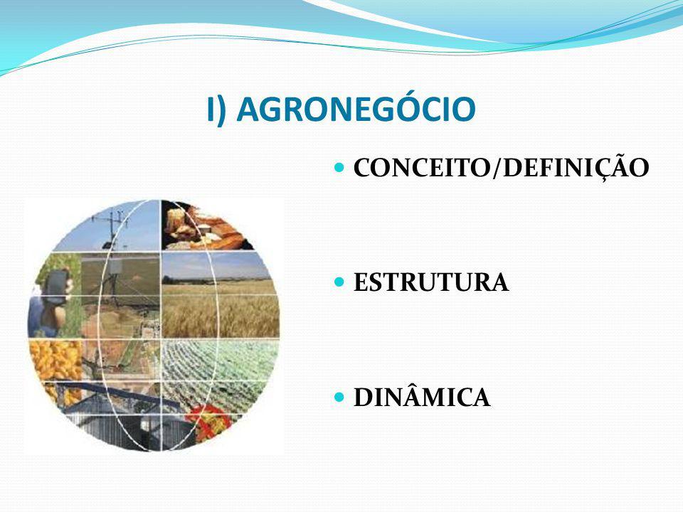 I) AGRONEGÓCIO CONCEITO/DEFINIÇÃO ESTRUTURA DINÂMICA