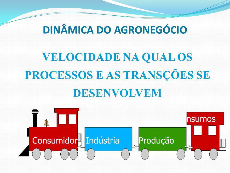 DINÂMICA DO AGRONEGÓCIO