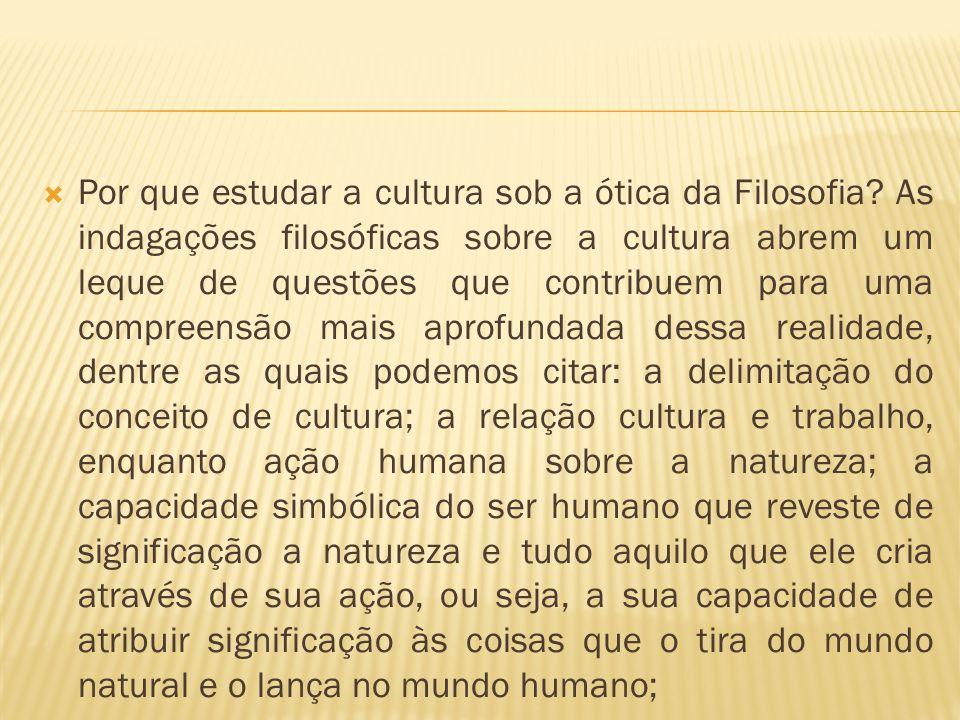 Por que estudar a cultura sob a ótica da Filosofia
