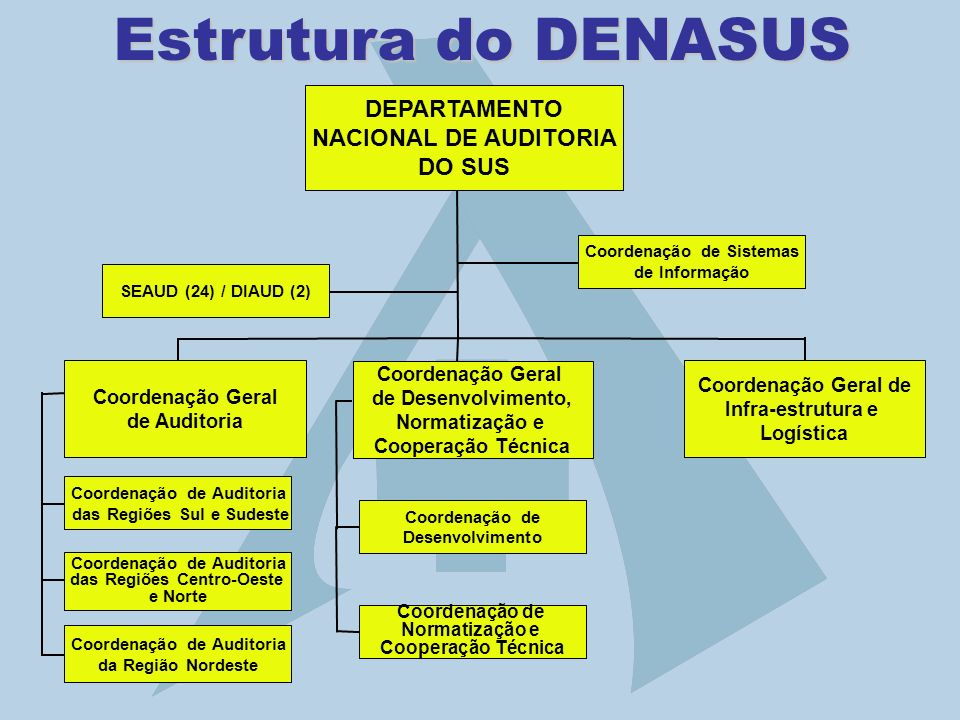 Estrutura do DENASUS DEPARTAMENTO NACIONAL DE AUDITORIA DO SUS