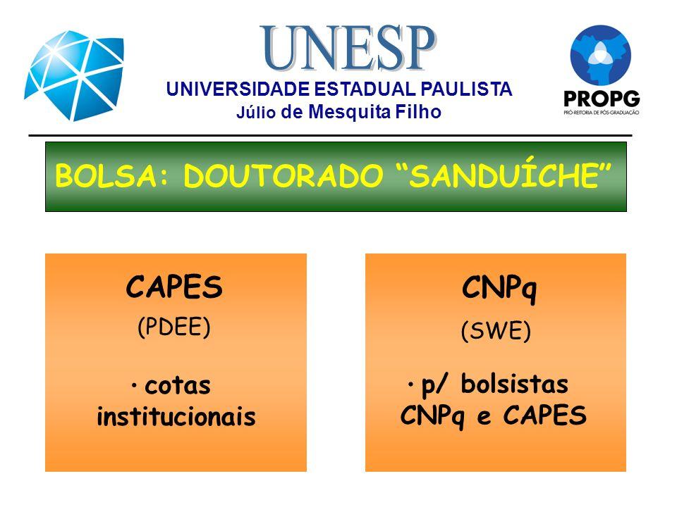 Universidade Estadual Paulista J Lio De Mesquita Filho Ppt Carregar