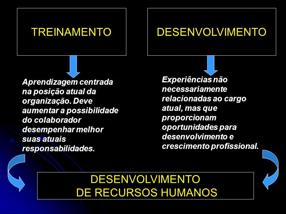 TREINAMENTO DESENVOLVIMENTO DESENVOLVIMENTO DE RECURSOS HUMANOS
