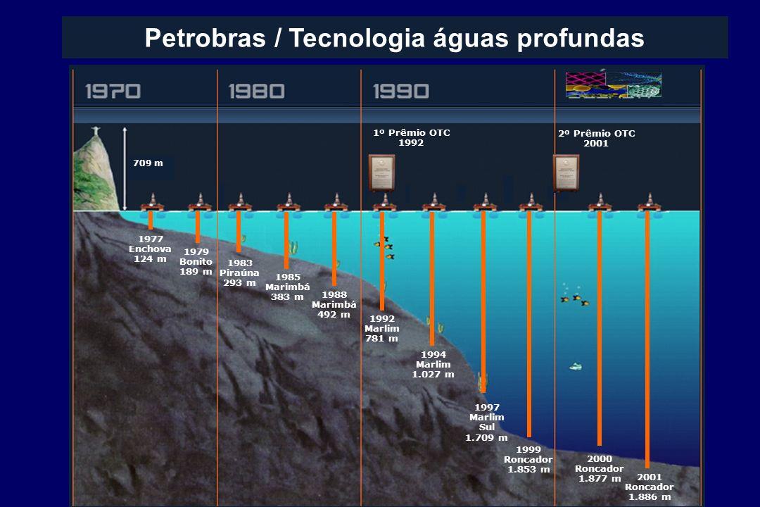 Petrobras / Tecnologia águas profundas