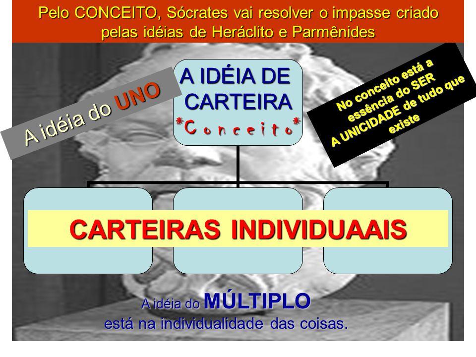CARTEIRAS INDIVIDUAAIS