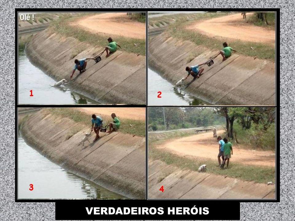 VERDADEIROS HERÓIS