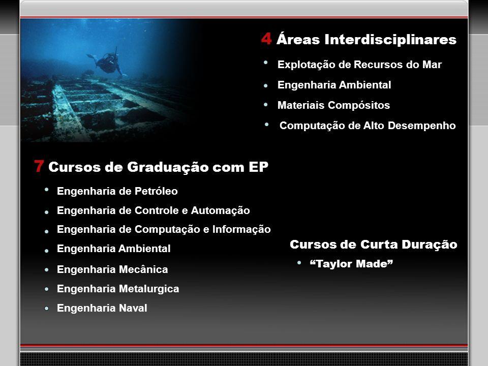 4 Áreas Interdisciplinares