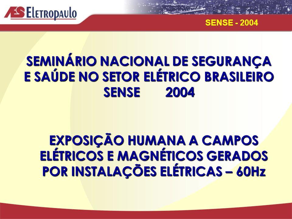 SEMINÁRIO NACIONAL DE SEGURANÇA E SAÚDE NO SETOR ELÉTRICO BRASILEIRO SENSE 2004