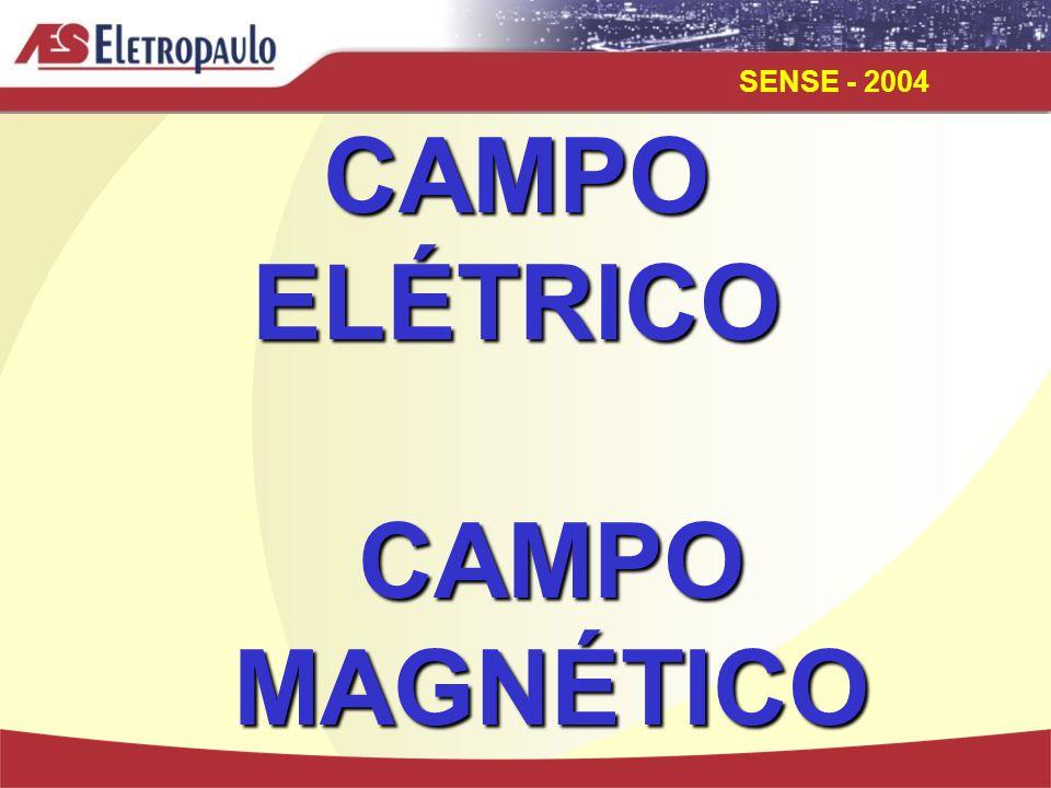 CAMPO ELÉTRICO CAMPO MAGNÉTICO