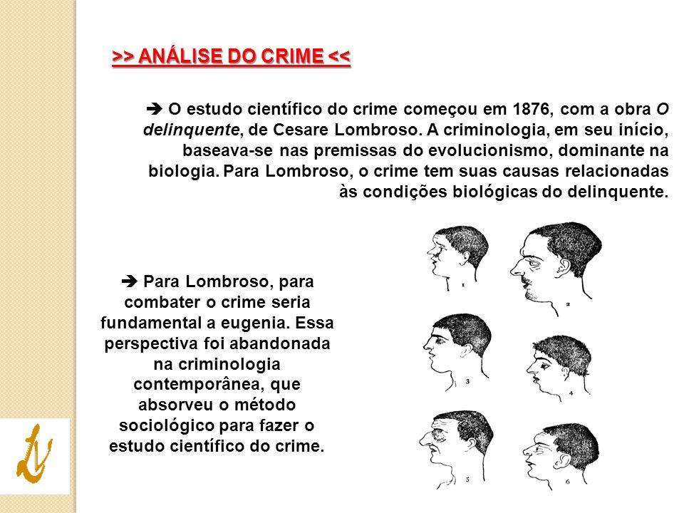 >> ANÁLISE DO CRIME <<