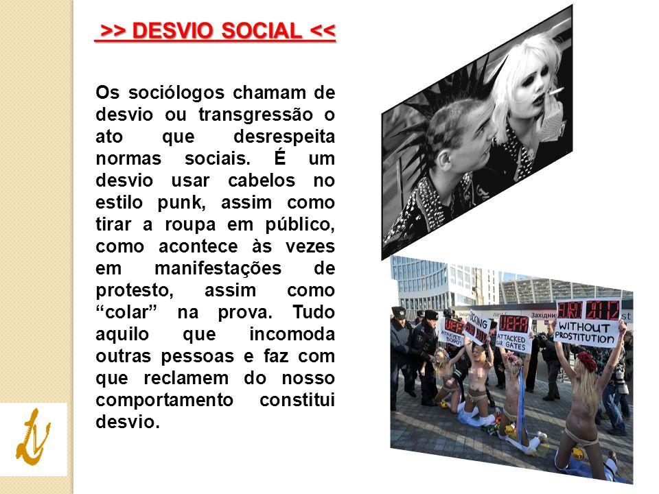 >> DESVIO SOCIAL <<