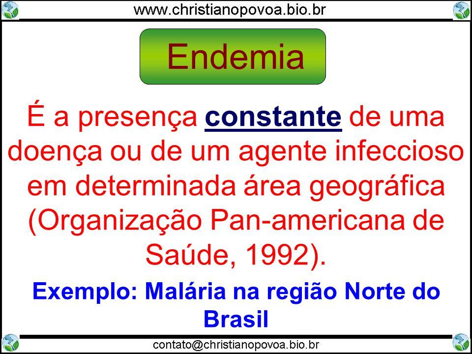 Exemplo: Malária na região Norte do Brasil