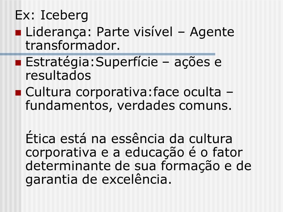 Ex: Iceberg Liderança: Parte visível – Agente transformador. Estratégia:Superfície – ações e resultados.