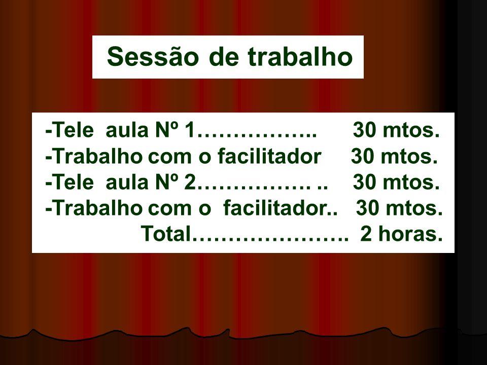 Sessão de trabalho -Tele aula Nº 1…………….. 30 mtos.