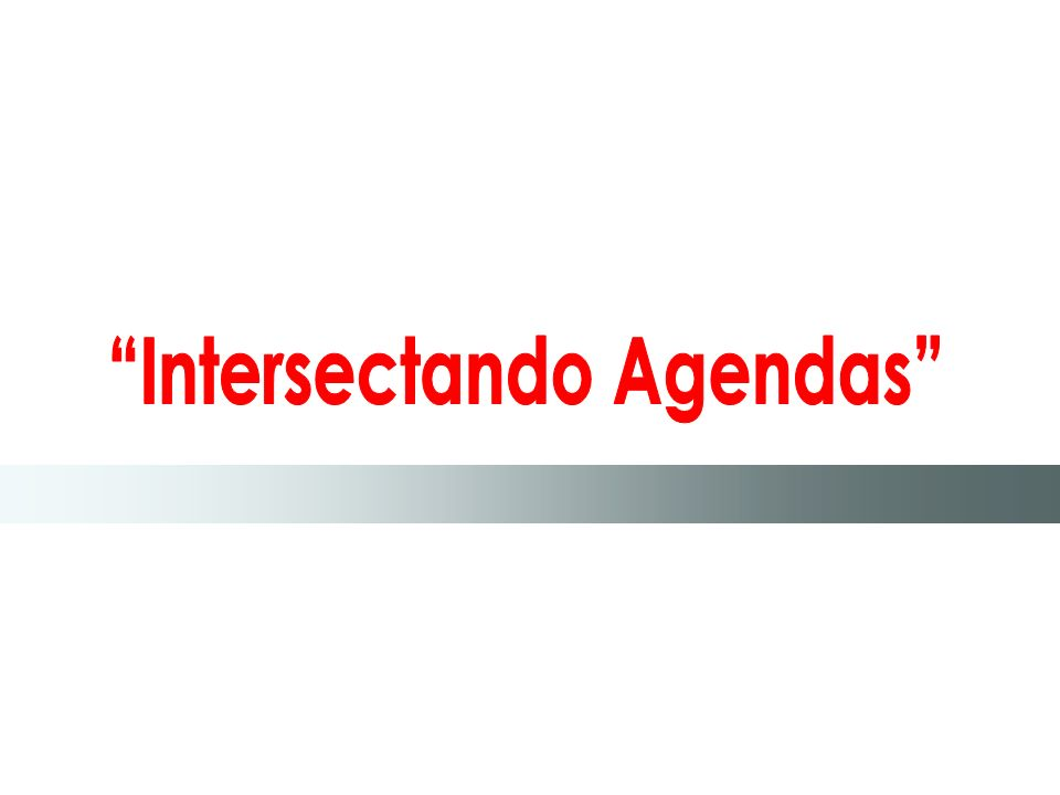 Intersectando Agendas
