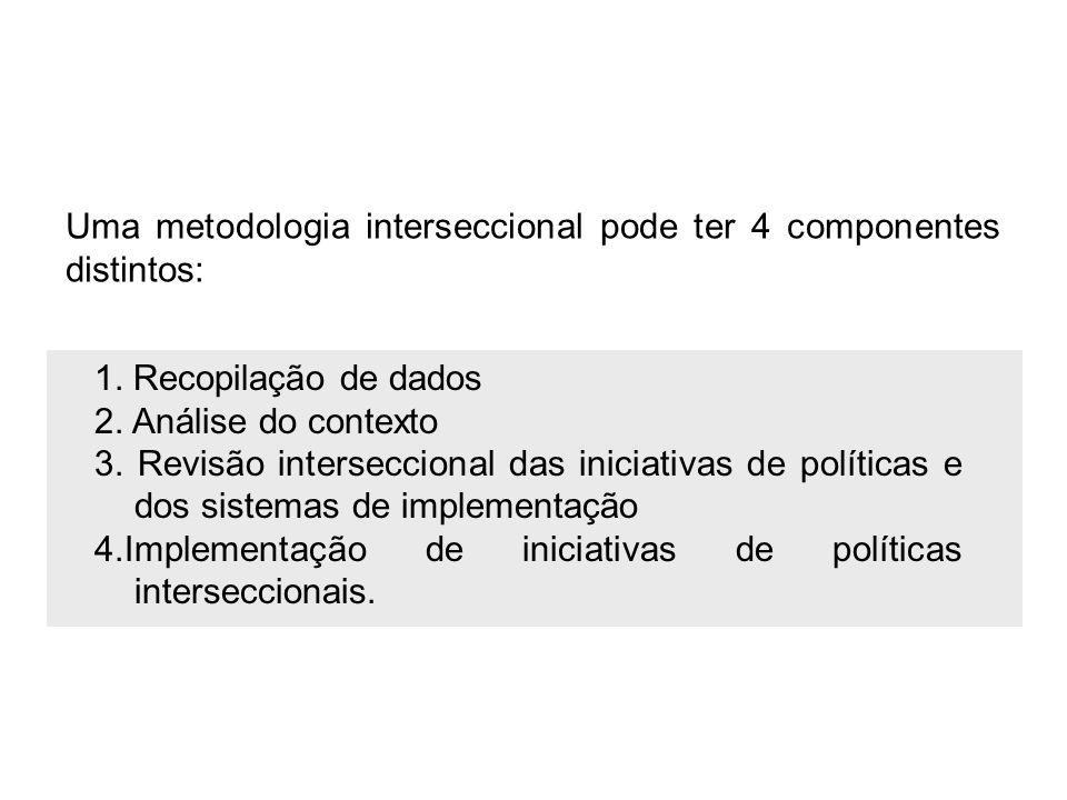 Uma metodologia interseccional pode ter 4 componentes distintos:
