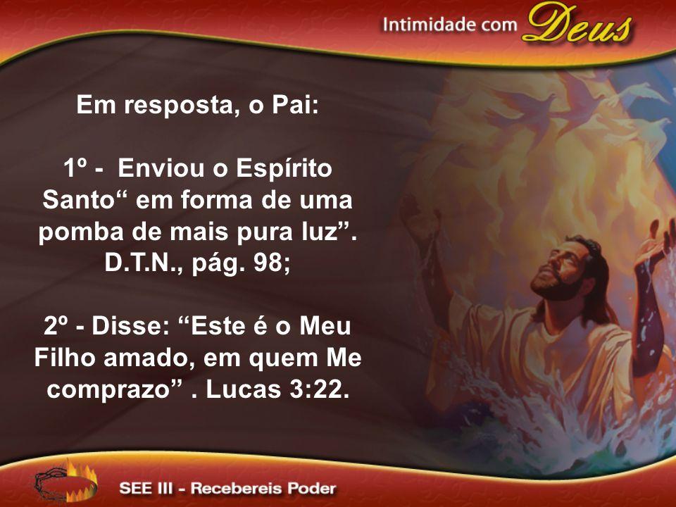 Em resposta, o Pai: 1º - Enviou o Espírito Santo em forma de uma pomba de mais pura luz . D.T.N., pág. 98;