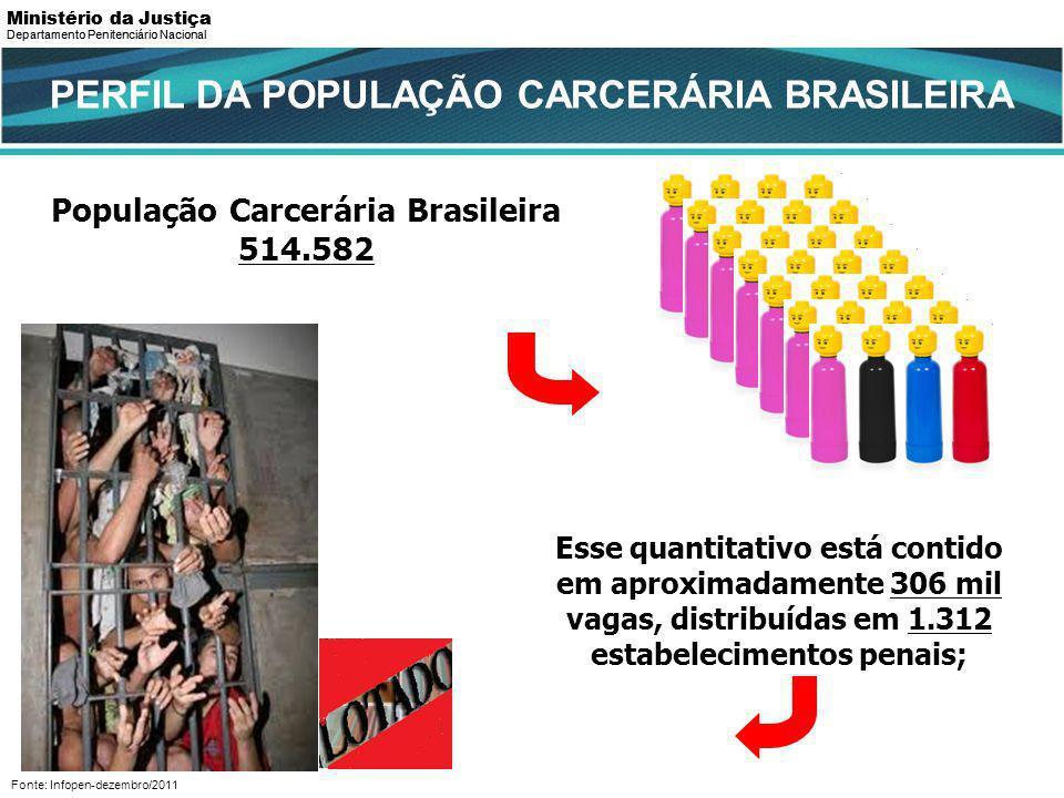 PERFIL DA POPULAÇÃO CARCERÁRIA BRASILEIRA