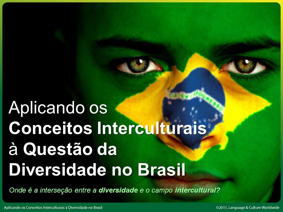 Onde é a interseção entre a diversidade e o campo intercultural