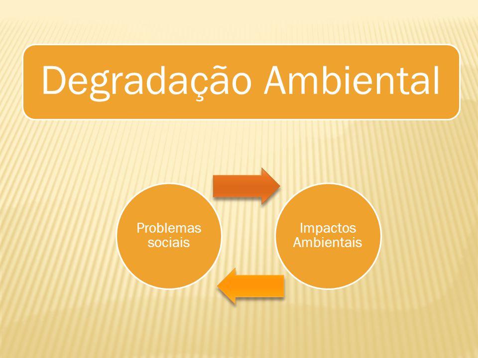 Degradação Ambiental Problemas sociais Impactos Ambientais