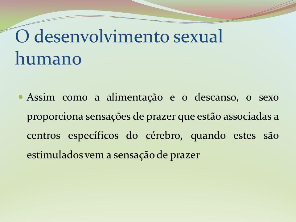 O desenvolvimento sexual humano