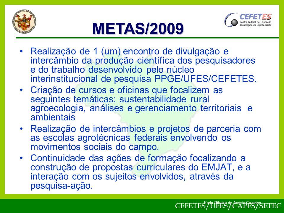 METAS/2009