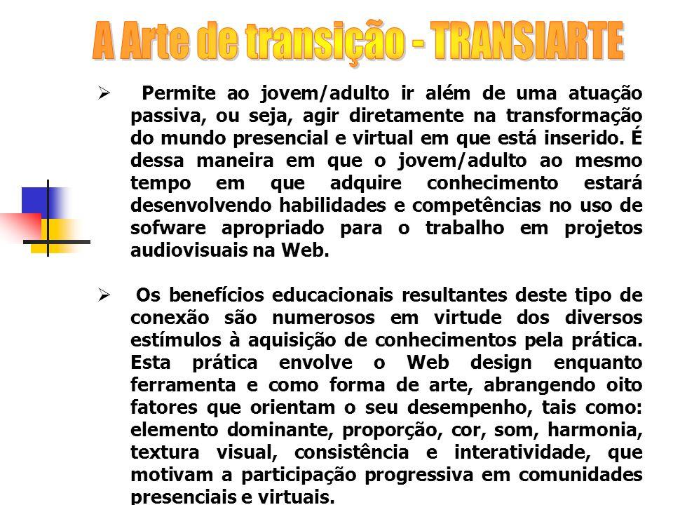A Arte de transição - TRANSIARTE