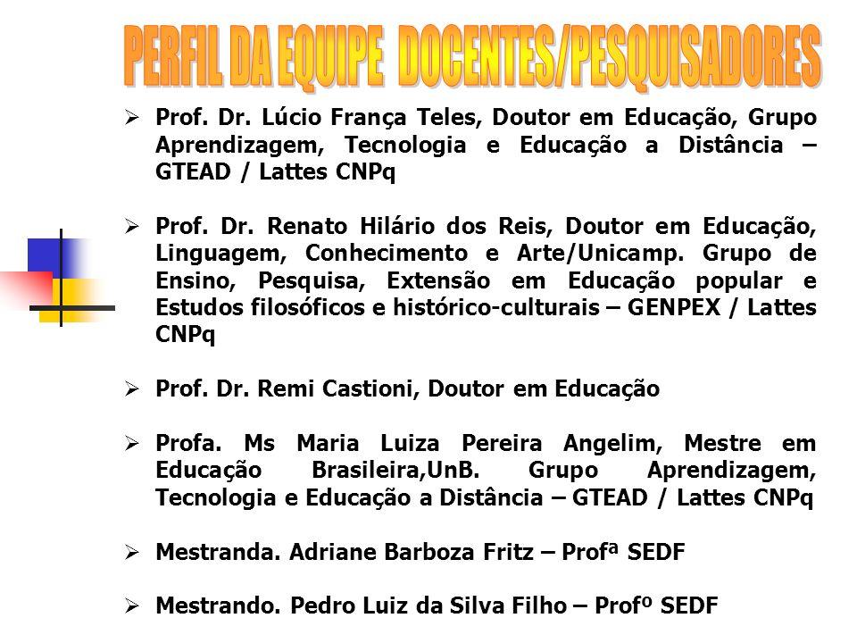 PERFIL DA EQUIPE DOCENTES/PESQUISADORES