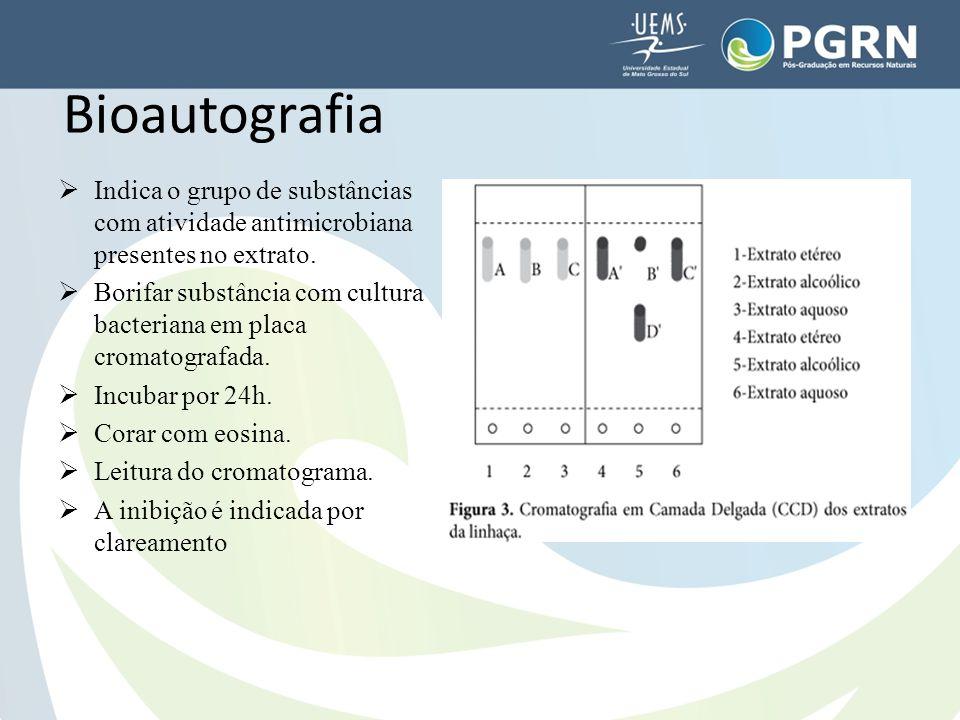 Bioautografia Indica o grupo de substâncias com atividade antimicrobiana presentes no extrato.