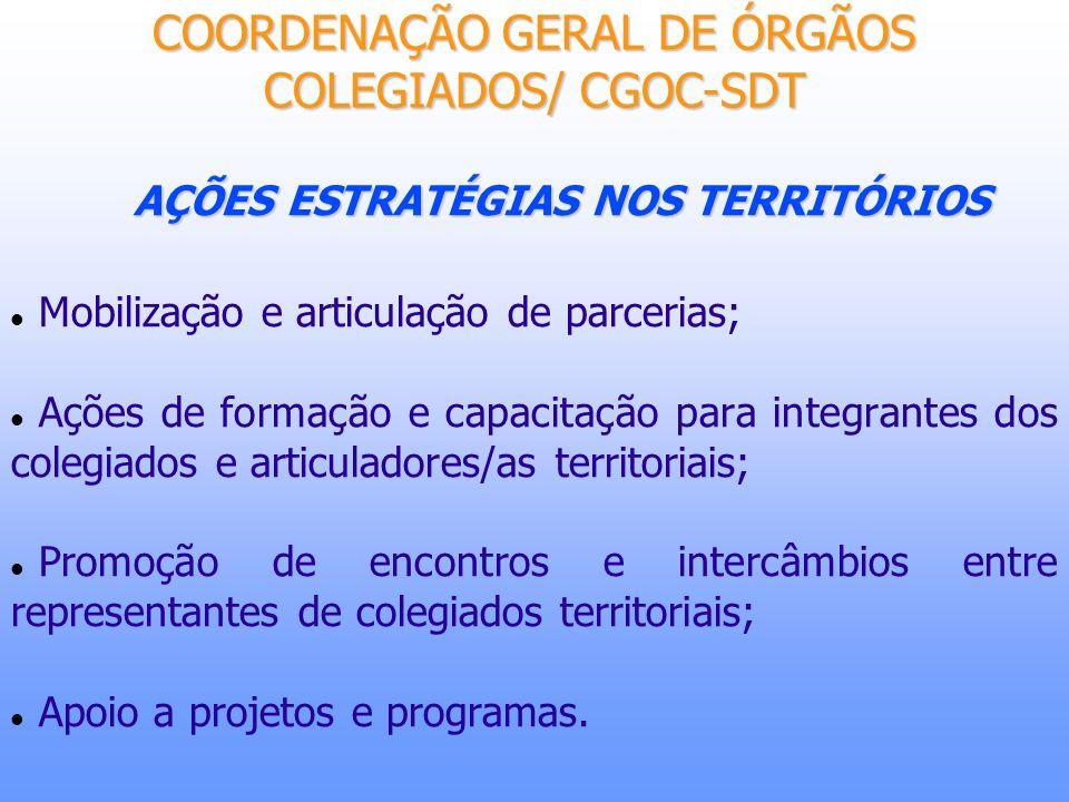 AÇÕES ESTRATÉGIAS NOS TERRITÓRIOS