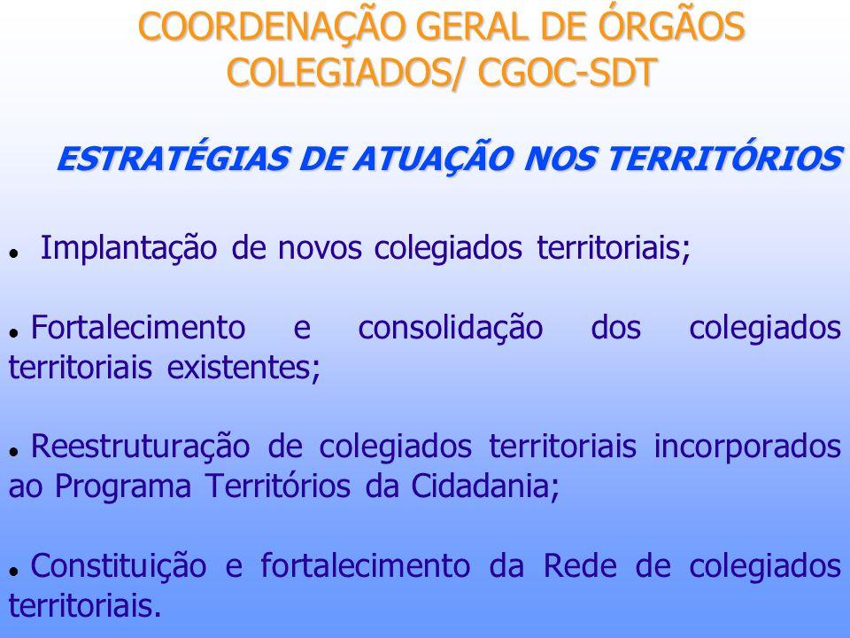 ESTRATÉGIAS DE ATUAÇÃO NOS TERRITÓRIOS