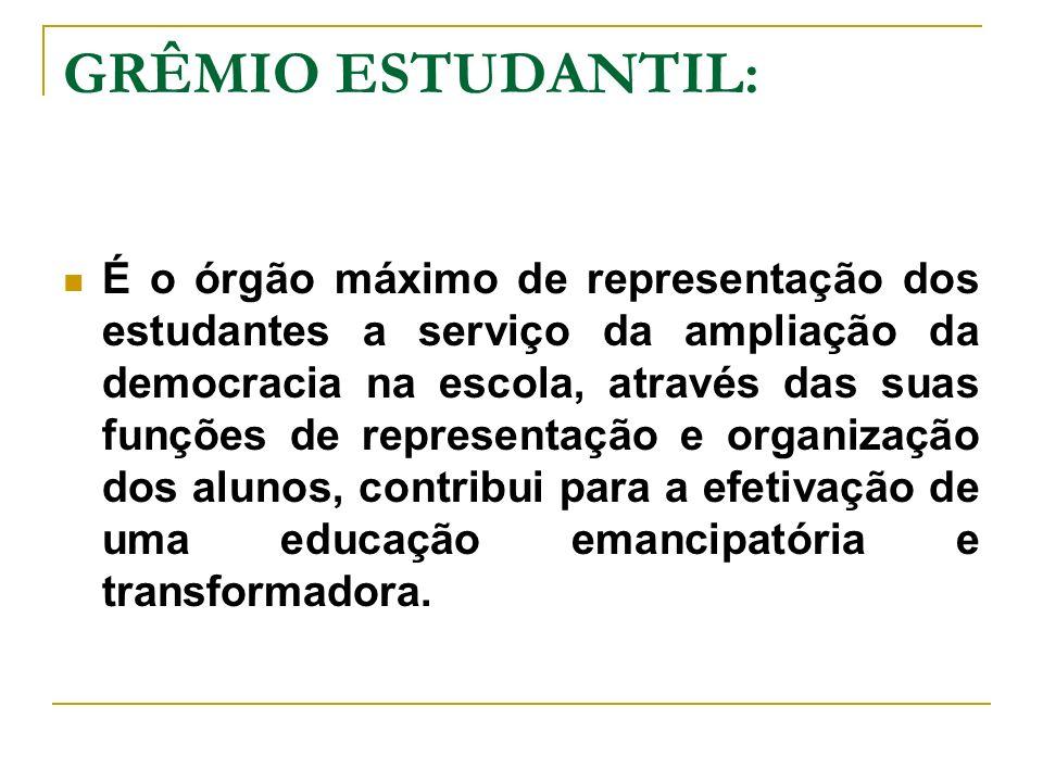 GRÊMIO ESTUDANTIL:
