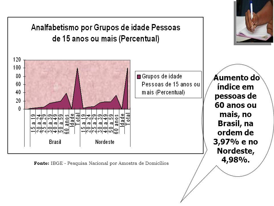 Fonte: IBGE - Pesquisa Nacional por Amostra de Domicílios