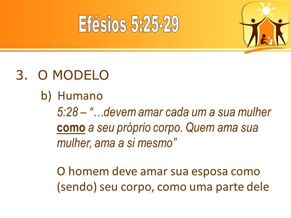 3. O MODELO b) Humano. 5:28 – …devem amar cada um a sua mulher como a seu próprio corpo. Quem ama sua mulher, ama a si mesmo