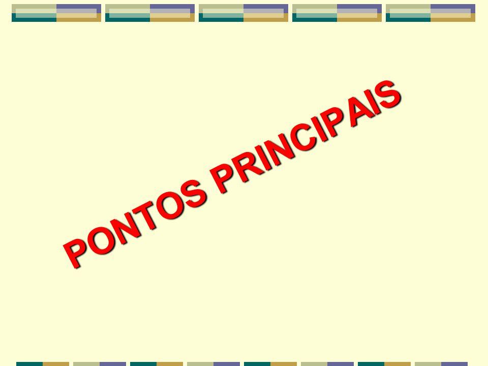 PONTOS PRINCIPAIS
