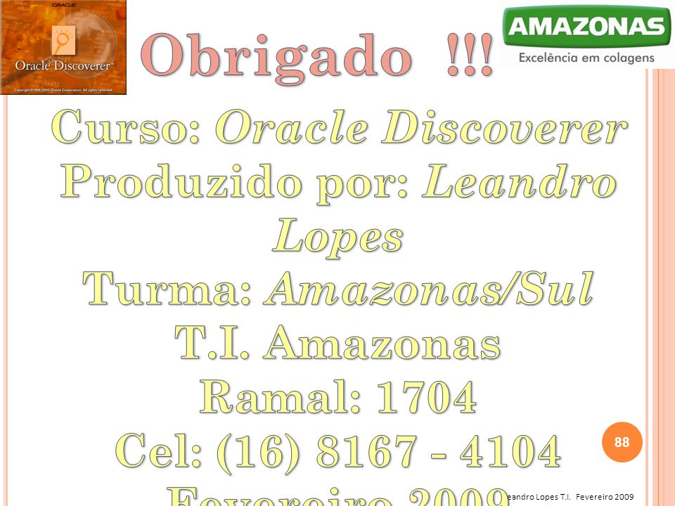 Curso: Oracle Discoverer Produzido por: Leandro Lopes