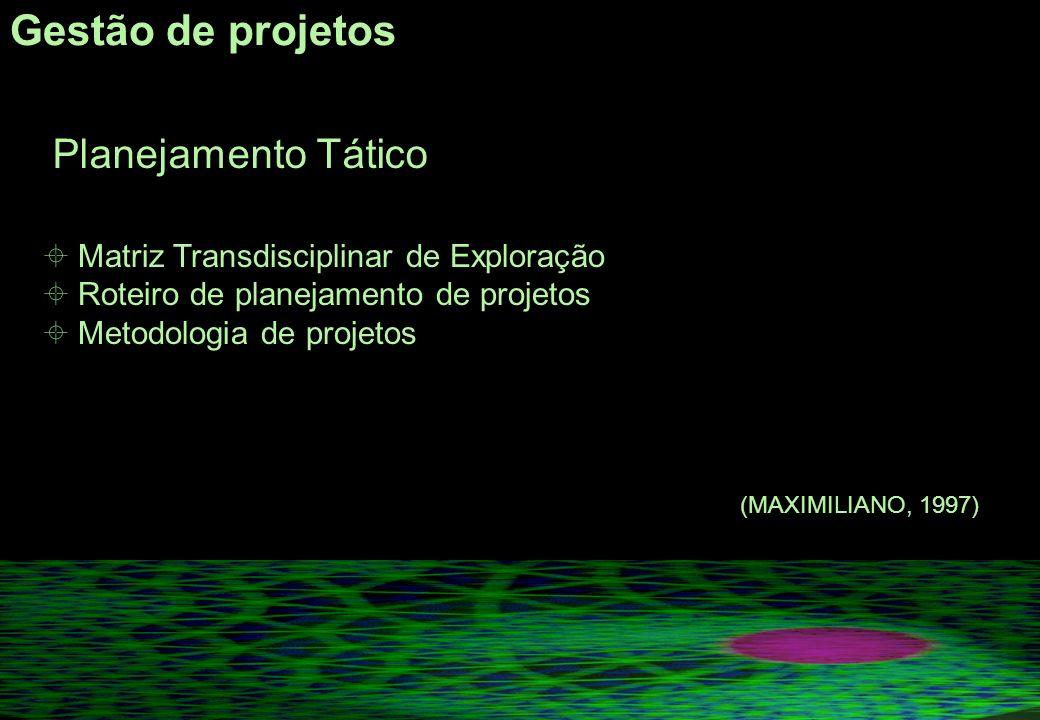 Gestão de projetos Matriz Transdisciplinar de Exploração