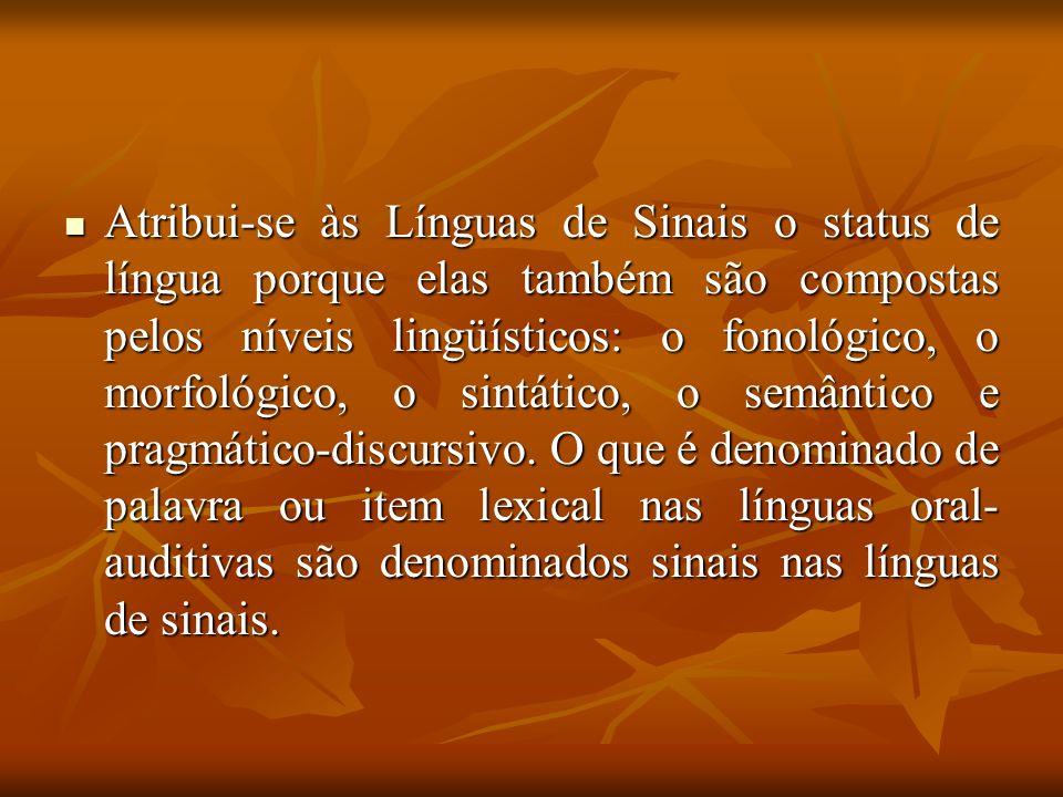 Atribui-se às Línguas de Sinais o status de língua porque elas também são compostas pelos níveis lingüísticos: o fonológico, o morfológico, o sintático, o semântico e pragmático-discursivo.