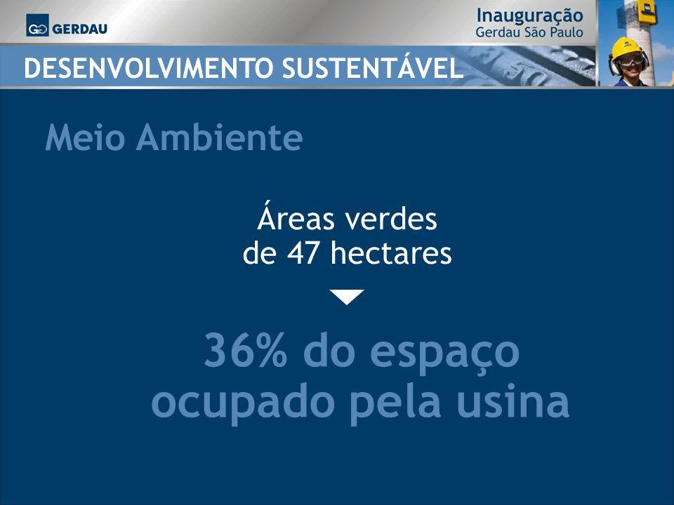 36% do espaço ocupado pela usina