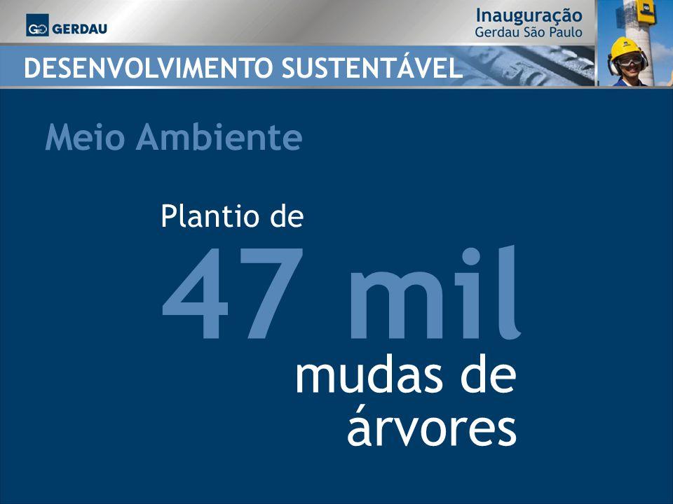 47 mil mudas de árvores Meio Ambiente Plantio de