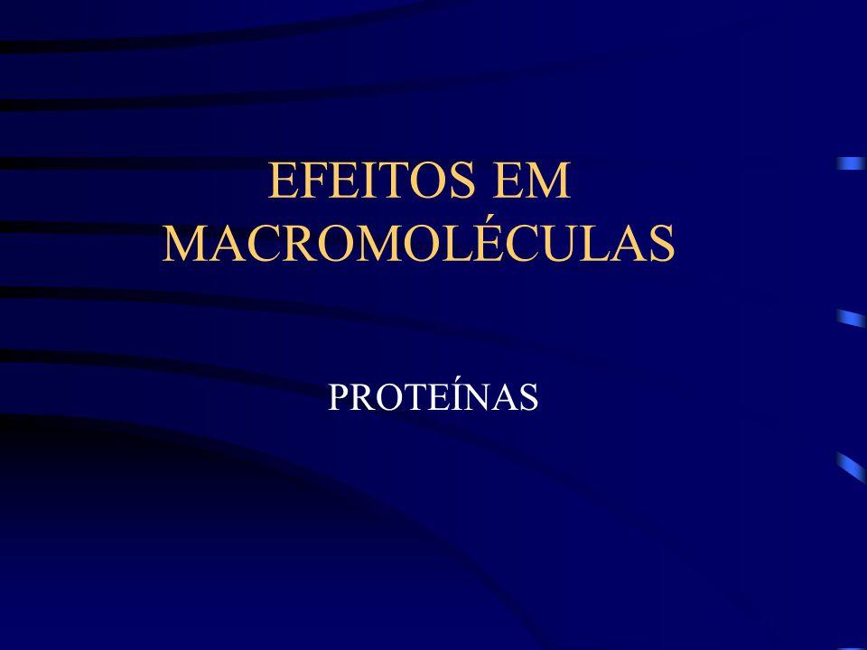 EFEITOS EM MACROMOLÉCULAS