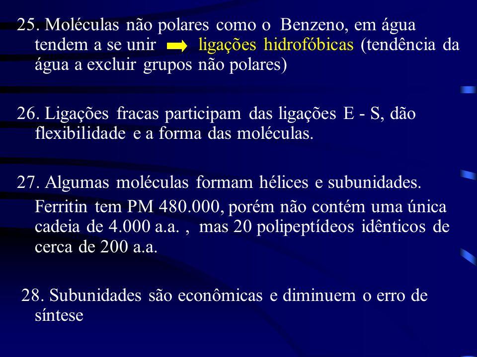 25. Moléculas não polares como o Benzeno, em água tendem a se unir ligações hidrofóbicas (tendência da água a excluir grupos não polares)