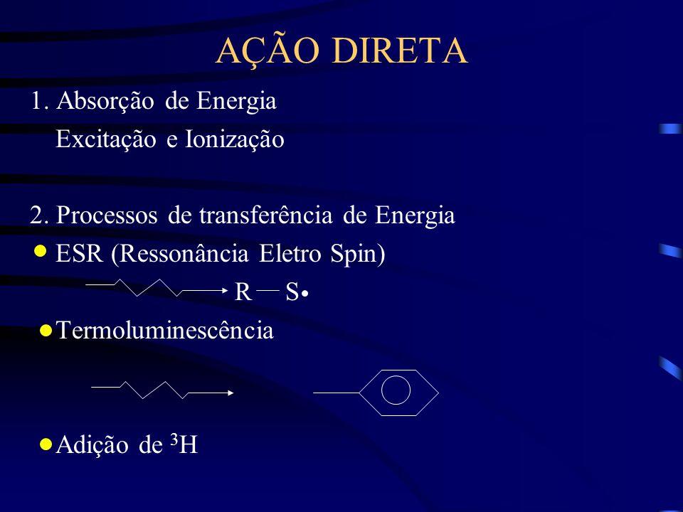 AÇÃO DIRETA 1. Absorção de Energia Excitação e Ionização